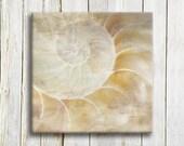Shell Art Print Sealife - Natural Shell Art print - bedroom decor - wedding gift