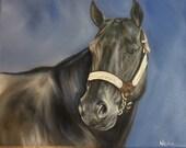 original Horse oil painting Nicolae Art Nicole Smith Artist Equine Art Quarter Horse Black Halter Showmanship