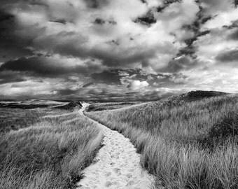 Black and White Beach Photography, Martha's Vineyard Photo Dunes Path Picture Coastal Decor Nautical Artwork Extra Large Art Oversized Print