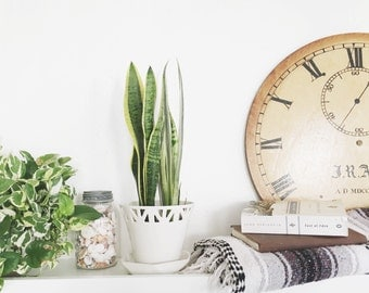 READY TO SHIP (small only!) - Ivory Table Top Planter