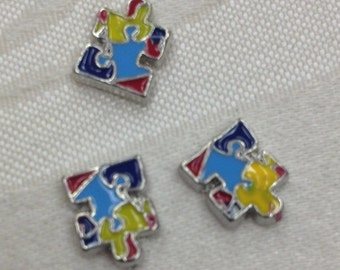 Colorful Puzzle for Autism Floating Charm