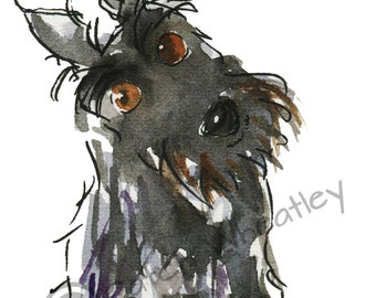 Scottish Terrier Dog  Art Print  Scottie Dog #154