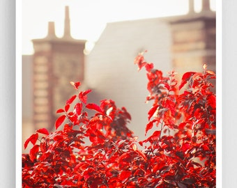 France photography - Rooftops - Chartres,France photo,French Fine art,France decor,8x10 wall art,red,brown,Fine art prints,Art Posters