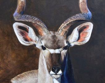 Greater Kudu Limited Edition of 95 Signed and Numbered Giclee Prints