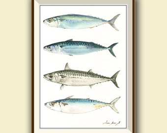 PRINT- Mackerel fishes- Fish painting art print - Mackerel fish art nursery ocean sport fishing decor - Art Print by Juan Bosco