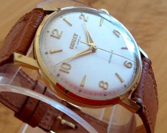 Stunning Swiss Chalet Watch
