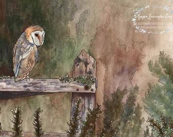 Owl Art - Barn Owl Perch - LARGE 13x19 or 16x20 Fine Art Print - Wildlife Painting - Barn owl watercolor