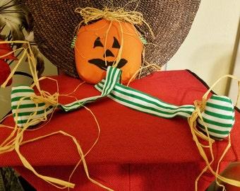 Pumpkin Long Green-Striped Leg Harvest B4