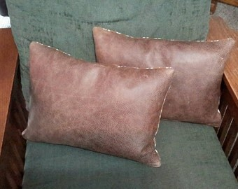 Two Full Grain Leather Pillows