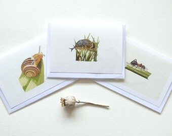 Set of 3 greeting cards, prints of hand embroidered work, Wood Ant, Brown Lipped Snail and Grass Snake