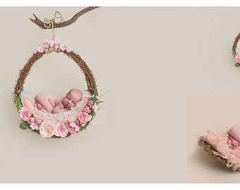 Digital prop/backdrop (Pink and Cream Hanging Vine Basket)