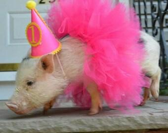 Pet Tutu, Pet Birthday Tutu, Dog Tutu, Dog costume, Pet costume, Dog birthday outfit, pet birthday, Pet Halloween, pet dress up outfit