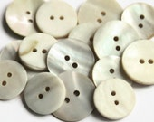 15 White Shell Buttons 17mm and 20mm - Mixed Pack - Mother of Pearl - Natural Shell button - Thick Shell Buttons - Cream Shell - SL15