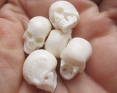 1 Set 5 Pieces Skull Carving From Buffalo Bone   24-130416