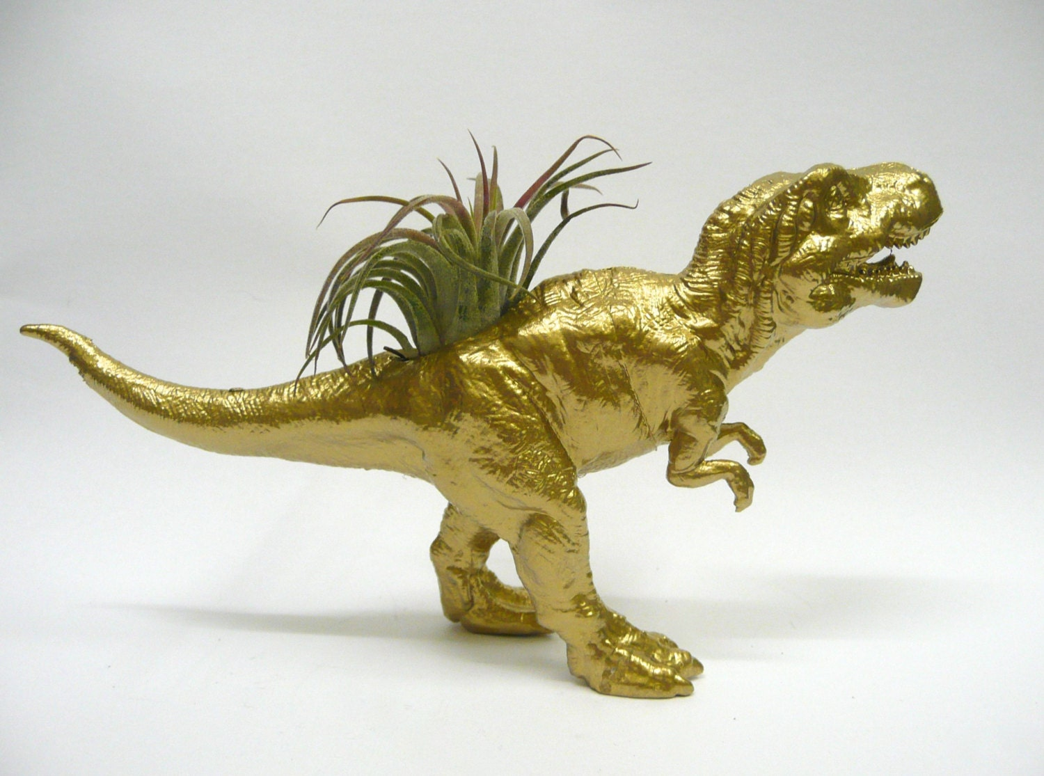 Gold T Rex Dinosaur Planter With Air Plant Coworker Gift