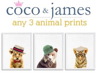 Baby Animal Nursery Prints Set of Three Prints Zoo Nursery Art Wild Animals Kids Room Decor Play Room Art Safari Nursery Woodland Nursery