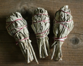 Californian white sage smudge
