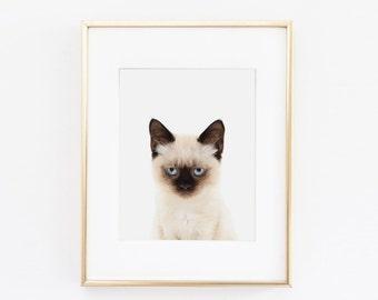 Siamese Cat Nursery Art Print | Cat Wall Art | Nursery Printable | Nursery Wall Art | Cat Art Print | Animal Nursery Art |