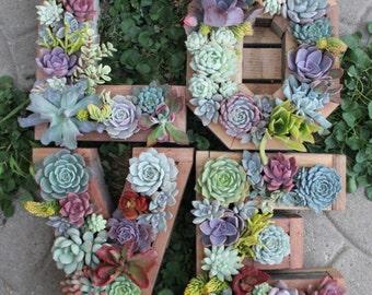 Monogram Letter Vertical Garden
