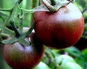 Tomato Black Cherry * Heirloom, Organic Non-Gmo 50 seeds