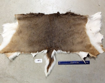 Soft Tanned Whitetail Deer Half Hide #4