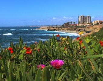 La Jolla Coastline, Ocean, Ice Plant, Flowers, Buildings, Pacific Coast, San Diego, California