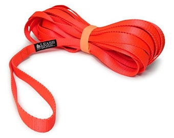 20 Foot Dog Leash - 3/4 Inch Nylon - Long Dog Leash with Storage Strap for Training & Play