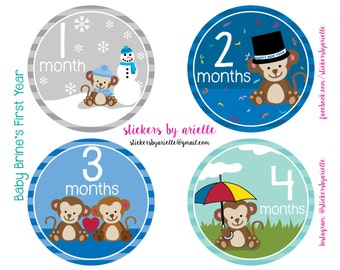 Month by Month Baby Boy Stickers - Monkey Theme