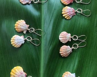 Hawiian sunrise shell earring on sterling silver or 24k gold fill