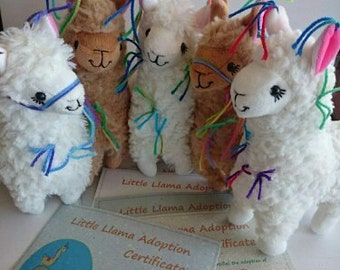 Adopt a llama! Little Llama Decorated with Tassles ...Just like the Llamas of Fox Hill! Mystery Llama with Adoption Certificate