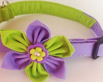 Purple & Green Girl Dog and Cat Flower Collar