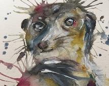 Meerkat Painting