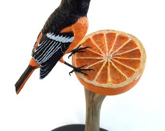 oriole on orange