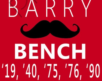 Cincinnati Reds Sports Banner
