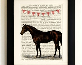 FRAMED ART PRINT on old antique book page - Horse with Bunting, Vintage Upcycled Wall Art Print Encyclopaedia Dictionary Page