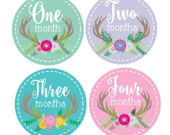 Monthly Baby Stickers, Antler Tribal Month Stickers for Girls, Baby Monthly Stickers, Newborn Photo Prop