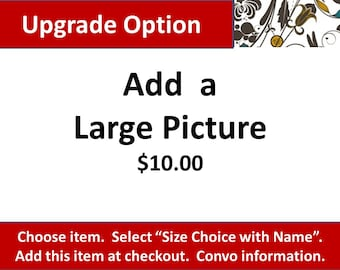 Upgrade Option, Add 1 Large Picture