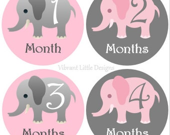 Baby Monthly Stickers Girl, Milestone Stickers, Month Stickers, Baby Month Stickers, Baby Stickers, Pink Elephant  #15