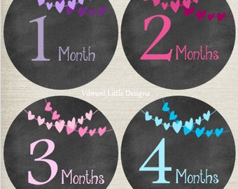 Baby Girl Monthly Stickers, Milestone Stickers, Month Stickers, Baby Month Stickers, Baby Stickers, Chalkboard, Hearts #64