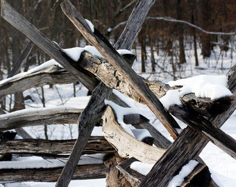 country rail fence (snow 11)