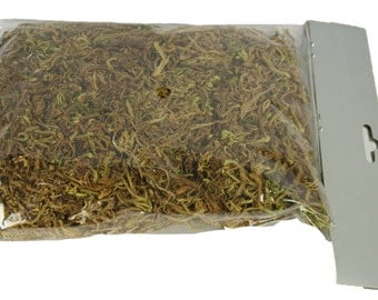 Craft Moss Green for Crafts and Floral Arrangements 50 Grams in a Bag