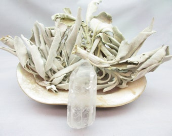 Loose White Sage, 2 Ounces