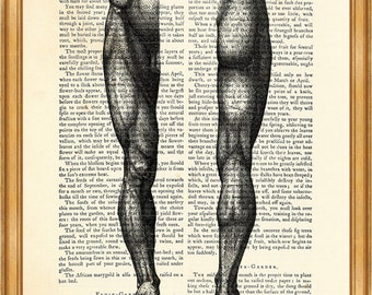 Anatomy Print Human Legs Drawing Muscle DICTIONARY ART PRINT on Vintage Dictionary Page 8'' x 10'' from up-cycled book