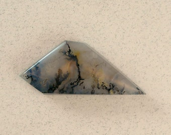 Graveyard Point Plume Agate #0989