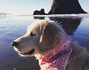 Dog Bandana, Dog Collar, Puppy Bandana. Personalized Dog Gift, Name Collar