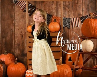 Baby, Toddler, Child, Pumpkin Wood Stand Booth - Digital Backdrop for Halloween or Fall Thanksgiving Photo Background - Studio Holiday Idea