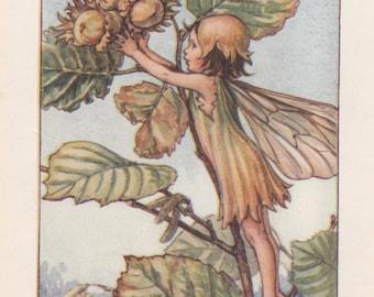 Flower Fairies: The HAZEL-NUT  FAIRY Vintage Print c1930 by Cicely Mary Barker