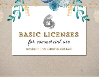 6 Basic Commercial Licenses Bundle for Commercial Use of Patterns, Graphic Design | Discount Package