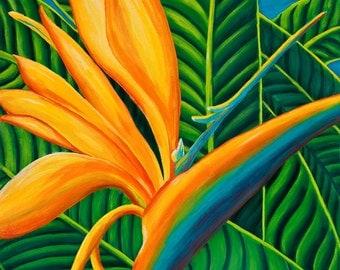bird of paradise Maui