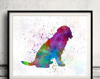 German Spaniel 01 in watercolor - Fine Art Print Poster Decor Home Watercolor Illustration Dog - SKU 1628